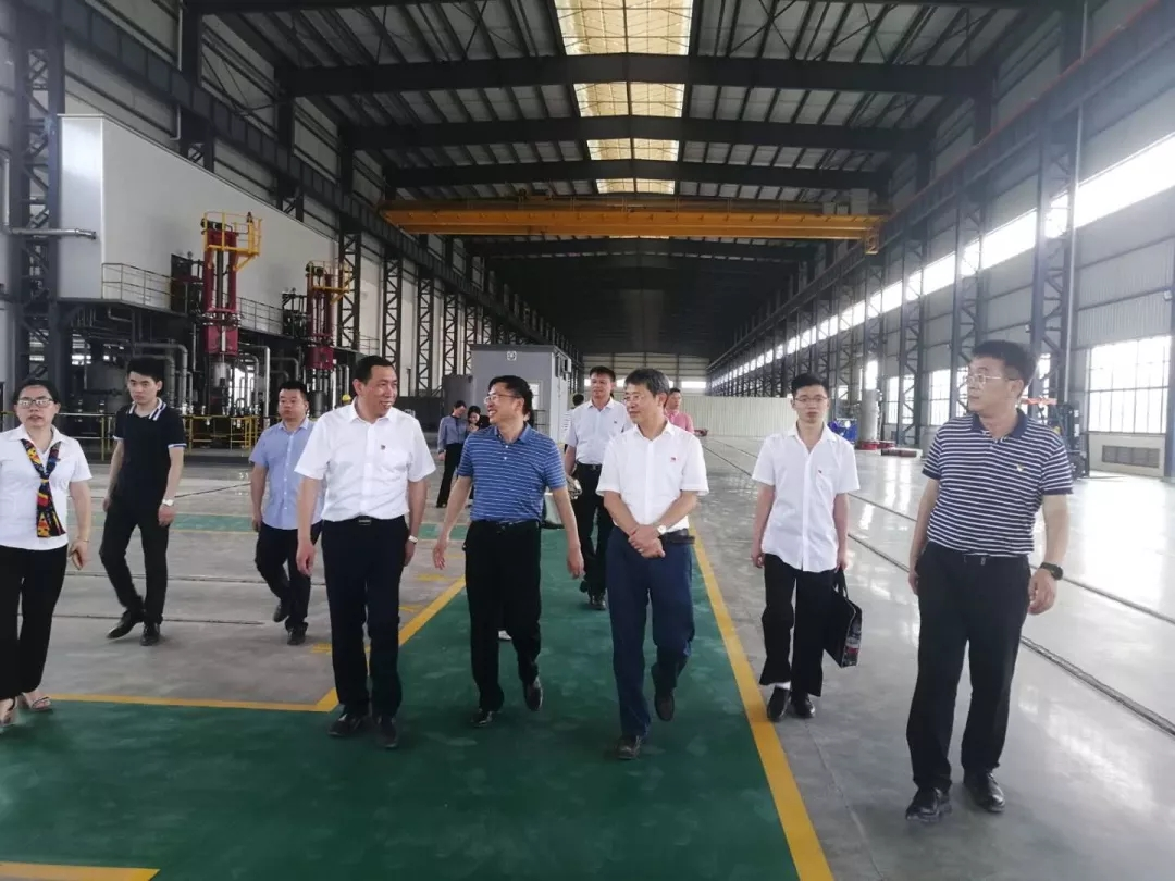 The leaders of Ganzhou inspection team visited Longyt